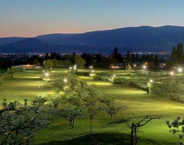 Night Time Golfing